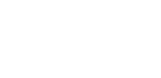 logo of BagleyFFF